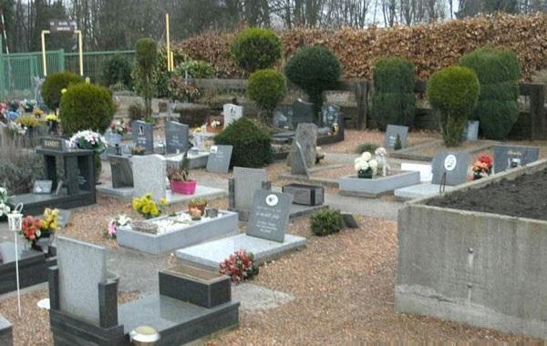 دفن حیوانات خانگی کنار صاحبانشان! +عکس