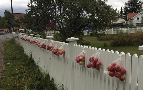 دیوار مهربانی در کشور سوئد! + عکس